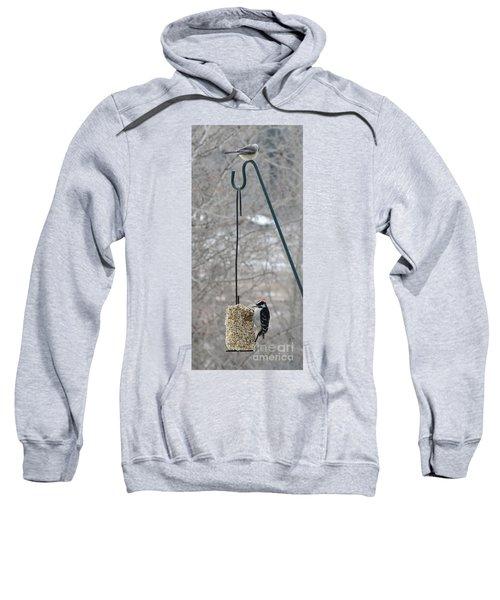 Woodpecker And Chickadee Sweatshirt