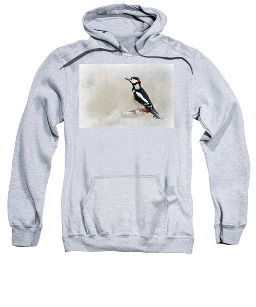 Woodpecker Sweatshirt by Heike Hultsch
