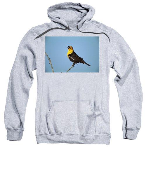 Yellow-headed Blackbird Singing Sweatshirt by Tom Vezo
