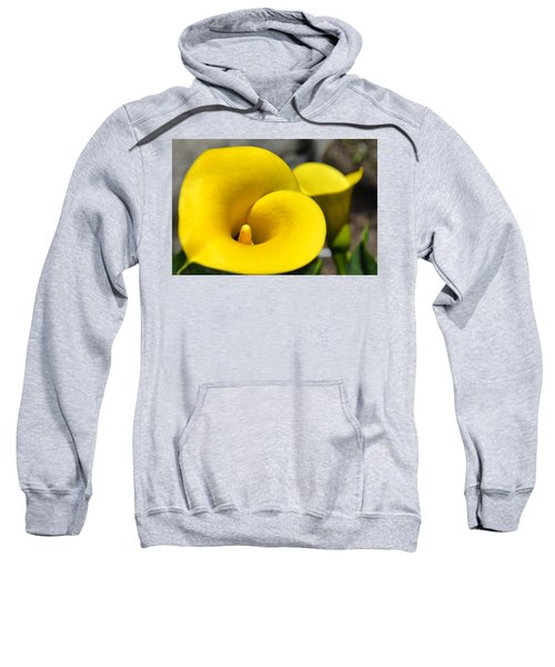 Yellow Lily Sweatshirt