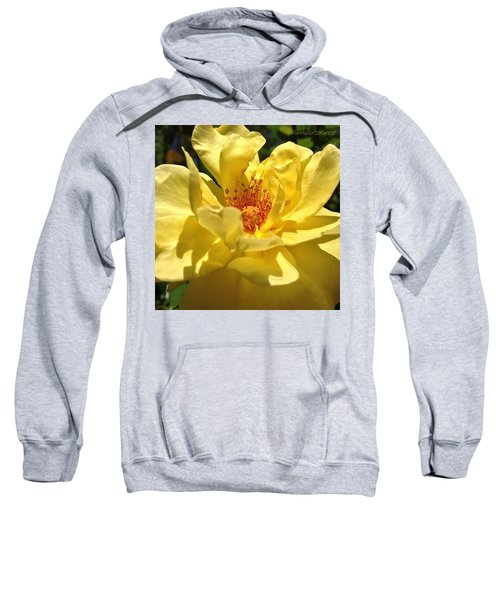 Yellow Monday Rose Sweatshirt