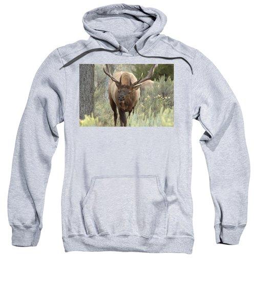 You Looking At Me Sweatshirt