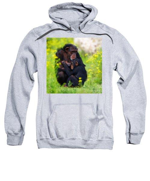 Young Chimpanzee With Adult - II Sweatshirt