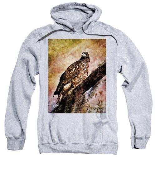 Young Eagle Pose II Sweatshirt