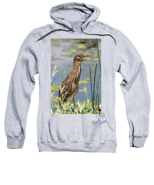Young Heron Sweatshirt