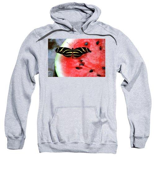 Zebra Longwing Butterfly On Watermelon Slice Sweatshirt