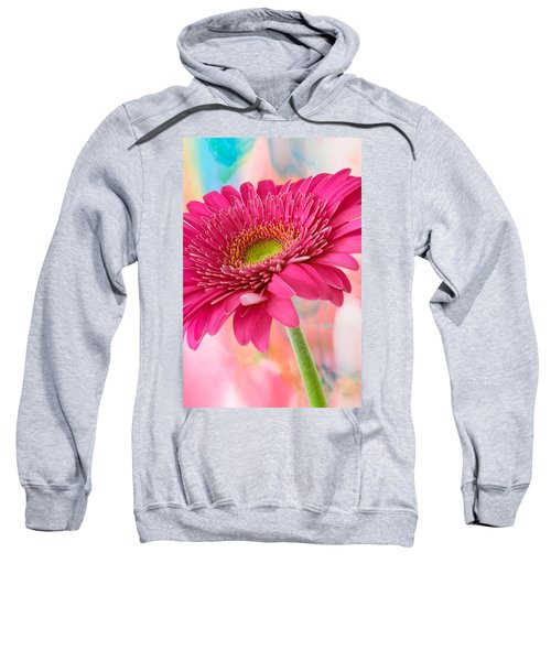 Gerbera Daisy Abstract Sweatshirt