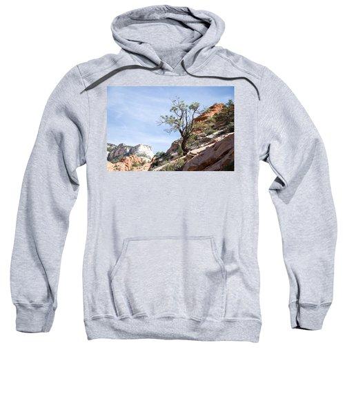 Zion National Park 1 Sweatshirt