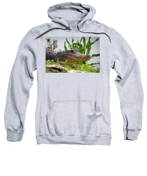 Alligator Sweatshirt