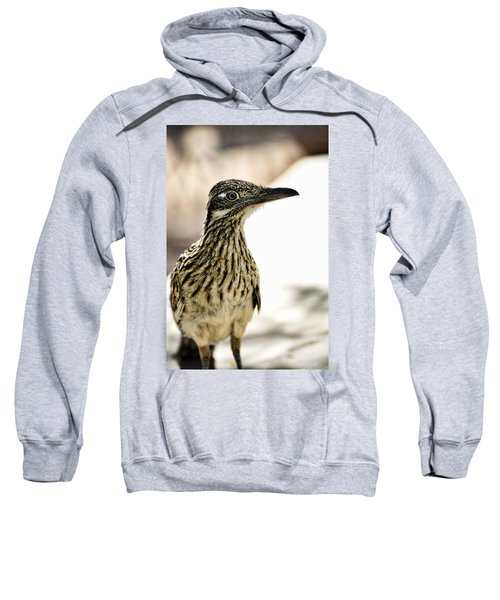 Greater Roadrunner  Sweatshirt
