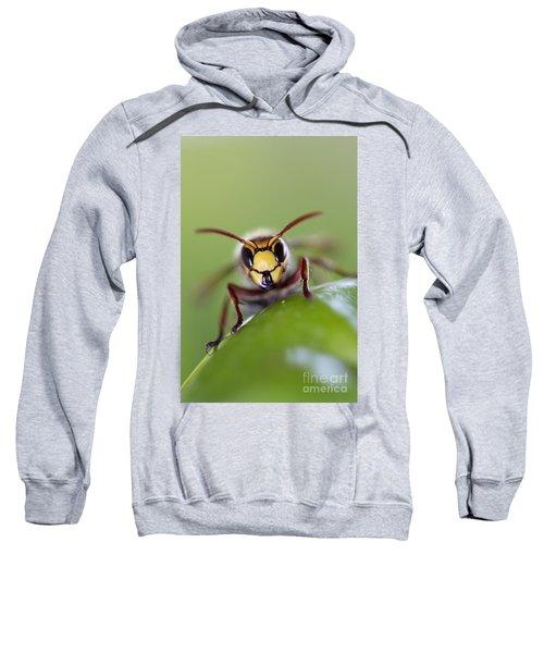Mandibles Sweatshirt