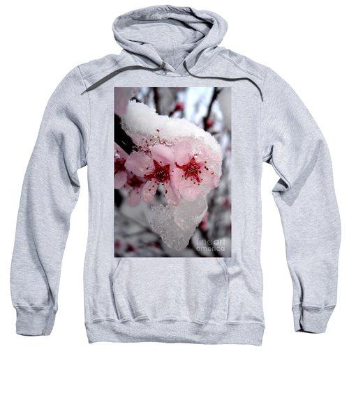 Spring Blossom Icicle Sweatshirt