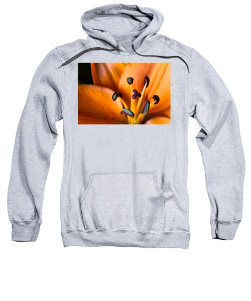 Tiger Lily Sweatshirt