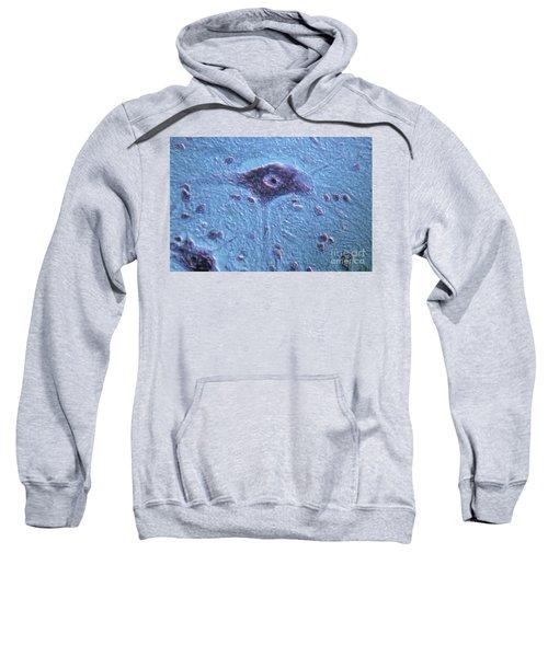 Neurons Sweatshirt