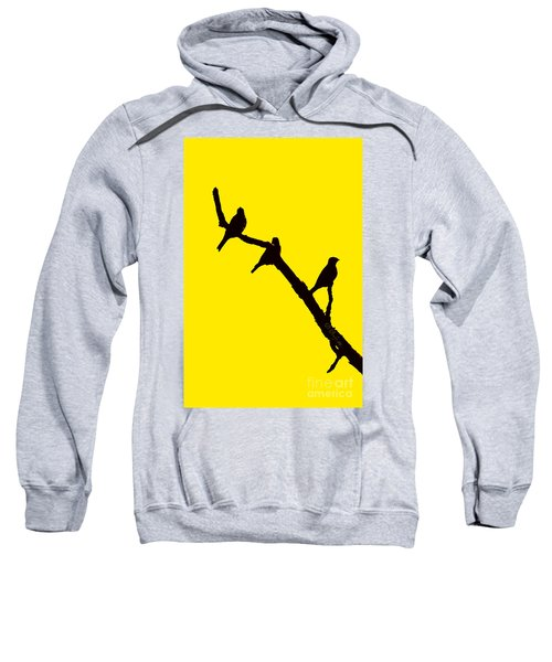3 Birds On A Limb Sweatshirt