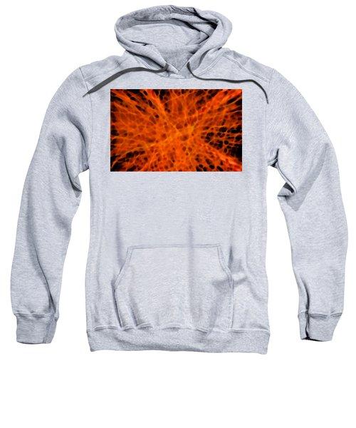 Sweatshirt featuring the digital art Regeneration by Mihaela Stancu