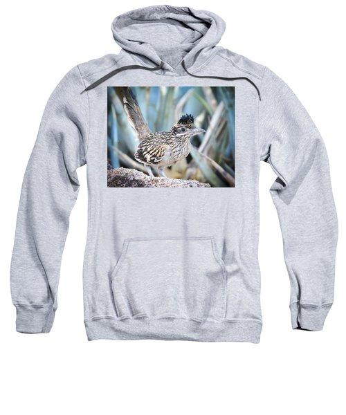 A Juvenile Greater Roadrunner  Sweatshirt by Saija  Lehtonen