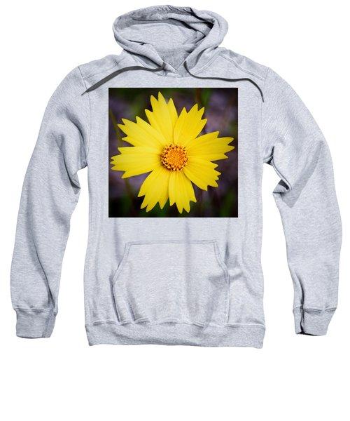 A Little Sunshine Sweatshirt