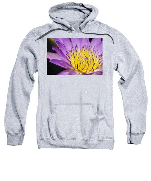 A Moment Stands Still Sweatshirt