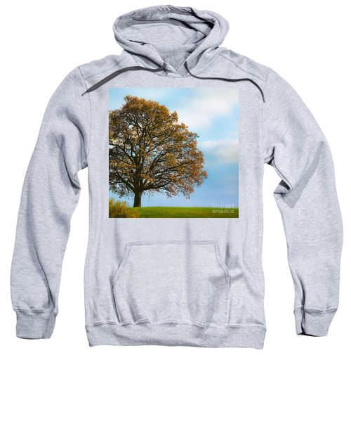 Alone On The Hill Sweatshirt