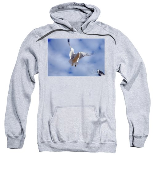 Applying Brakes In Flight Sweatshirt