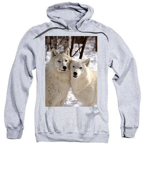 Arctic Wolves Close Together In Winter Sweatshirt