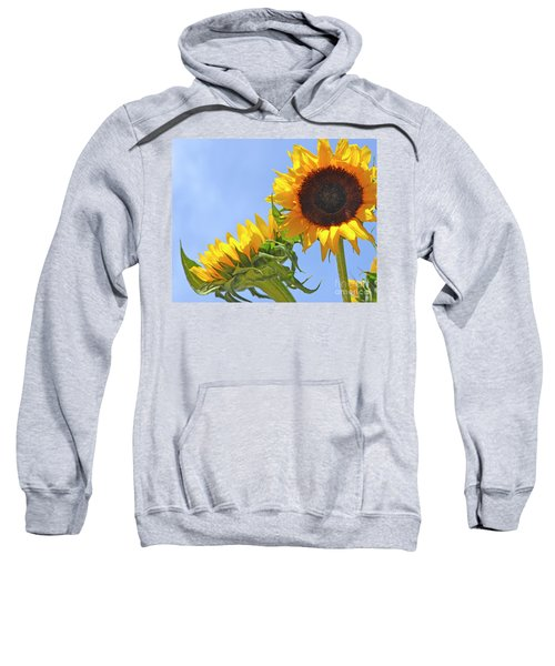 August Sunshine Sweatshirt
