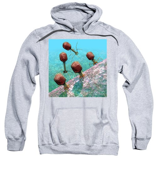 Bacteriophage T4 Virus Group 1 Sweatshirt