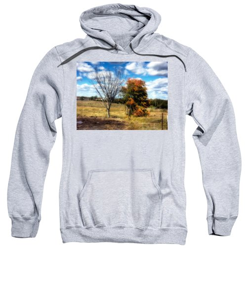 Before And After Sweatshirt