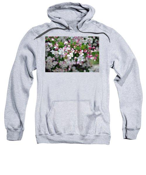 Blossoms On Blossoms Sweatshirt