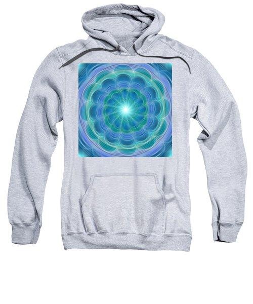 Bluefloraspin Sweatshirt