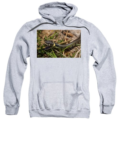 British Grass Snake Sweatshirt