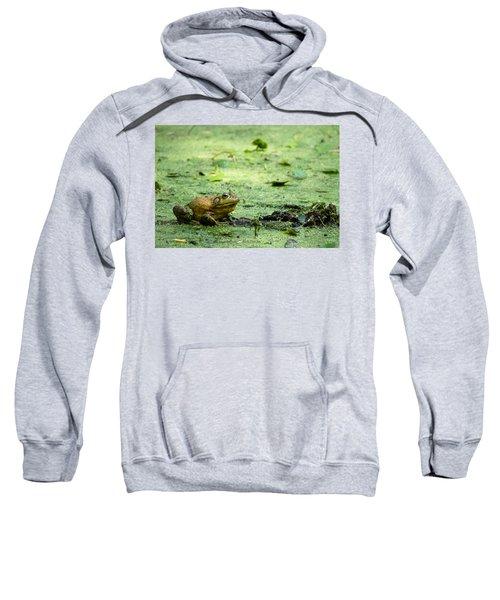 Bull Frog Sweatshirt