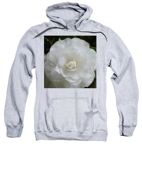 Camellia After Rain Storm Sweatshirt