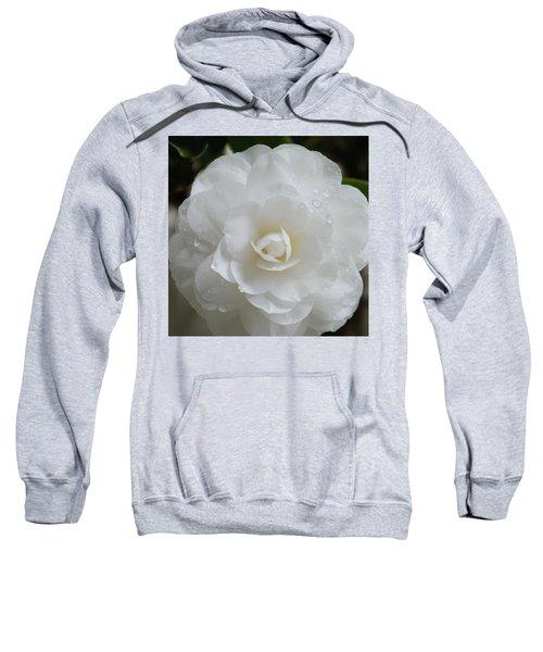 Camellia After Rain Storm Sweatshirt