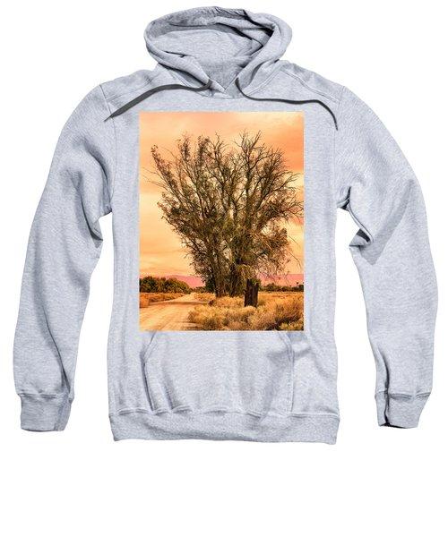 Coachella Valley Morning Sweatshirt