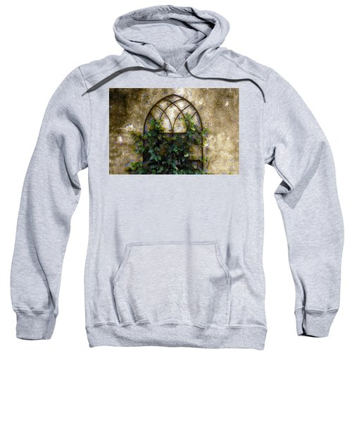Creeping Vine 1 Sweatshirt