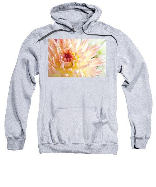 Dahlia Flower 01 Sweatshirt