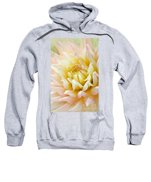Dahlia Flower 03 Sweatshirt