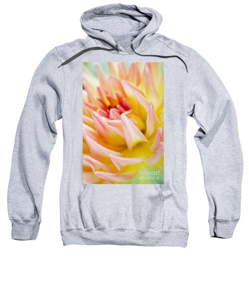 Dahlia Flower 04 Sweatshirt