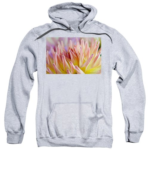 Dahlia Flower 05 Sweatshirt
