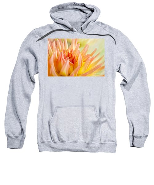 Dahlia Flower 06 Sweatshirt