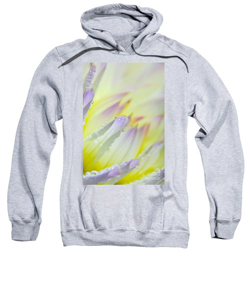 Dahlia Flower 07 Sweatshirt