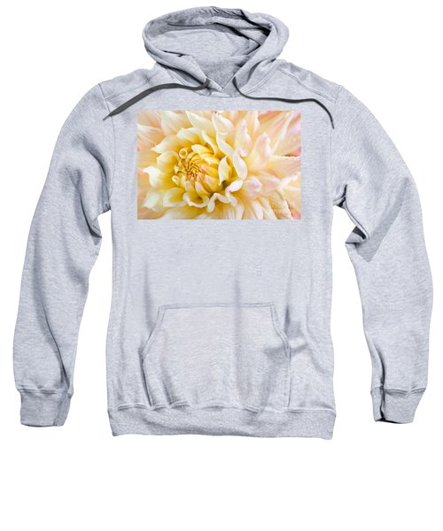 Dahlia Flower 08 Sweatshirt
