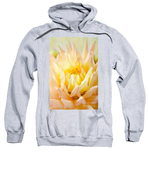 Dahlia Flower 10 Sweatshirt