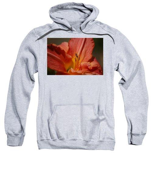 Daylilly Sweatshirt