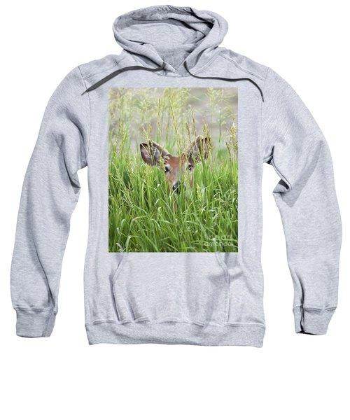 Deer In Hiding Sweatshirt