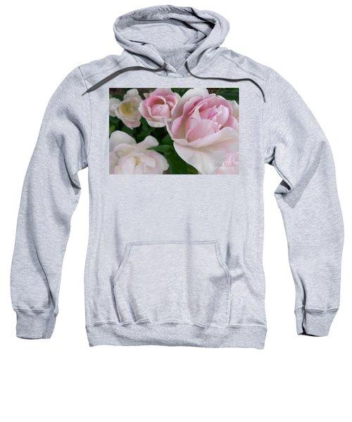 Double Pink Sweatshirt