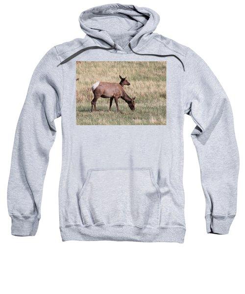 Double Vision Sweatshirt