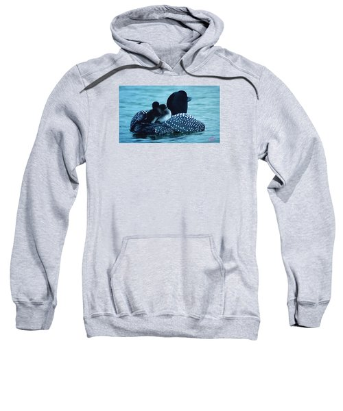 Duck Family Joy In The Lake  Sweatshirt